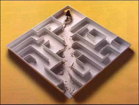 labrat The Better Mouse Trap Inside the Better Rat Maze
