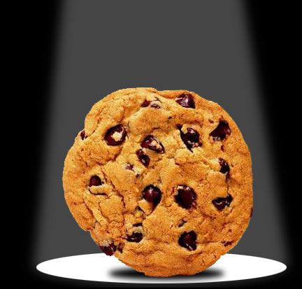 [http://www.cookbookpeople.com/blog/wp-content/uploads/2008/07/chocolate-chip-cookie-great.jpg]