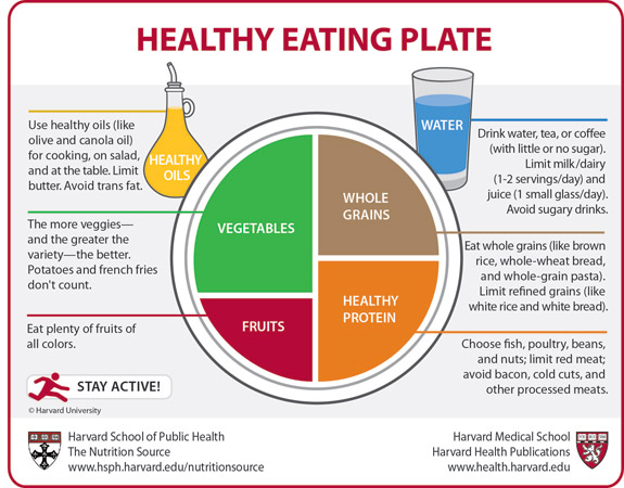 great healthy eating diagram to add to your recipe binder
